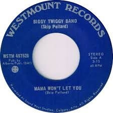 Biggy Twiggy Band -- Mama Won't Let You b/w I Don't Want That to Change - 7