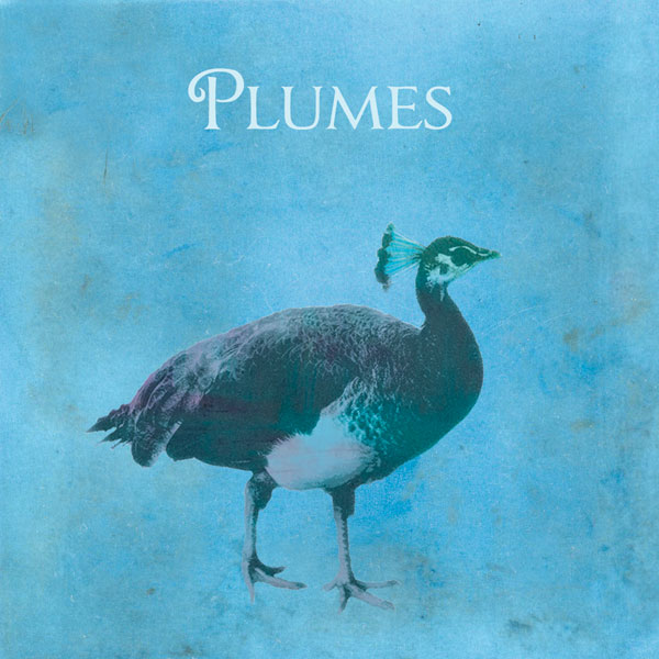 Plumes -- Plumes