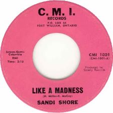 Sandi Shore &middot Like A Madness / Until You're Home Again - 7